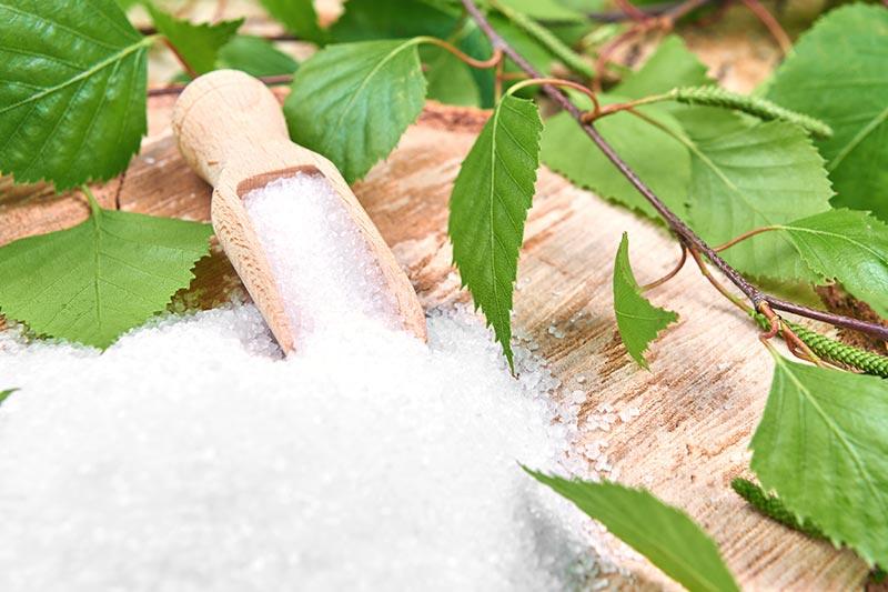 Azúcar de abedul, eritritol o néctar de agave: Desglose de 8 sustitutos del azúcar